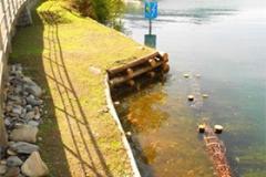 Uferverbauung mit Kastanien Rundholz